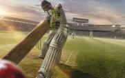 cricket-istock-519665528