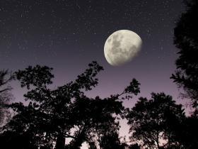 night time - moon