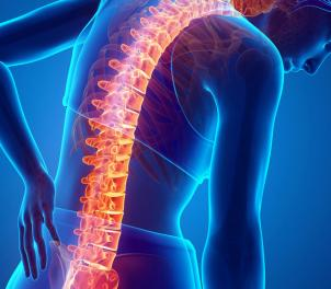 back pain - musculoskeletal