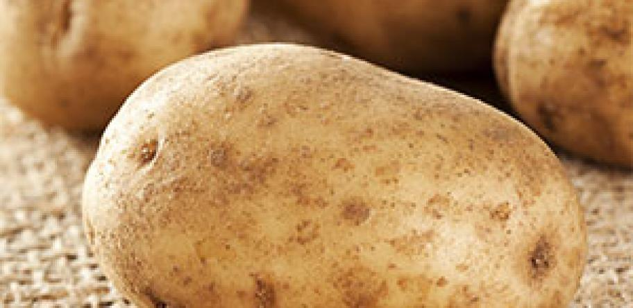 Nutritionist cautions over potato-only diet | Australian